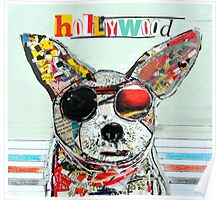 hollywood chihuahua  Poster