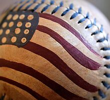 America's Pastime by Brian Gaynor