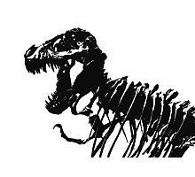 T-Rex Skeleton Photographic Print