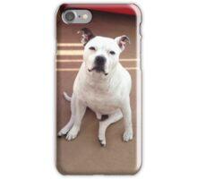 Staffordshire Bull Terrier iPhone Case/Skin