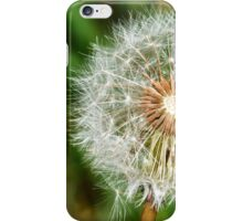 The Seed iPhone Case/Skin