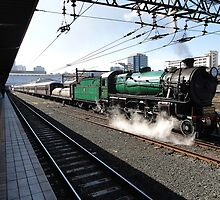 Steam Engine 3642, Sydney, Australia 2012 by muz2142