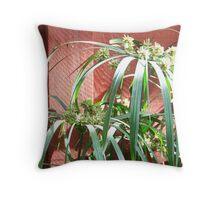 Cyperus papyrus Throw Pillow