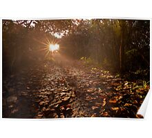 Pathway to the Sun Poster
