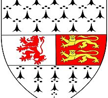 County Carlow Coat of Arms  by abbeyz71
