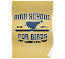 Bird School for Birds Poster