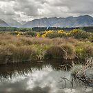 Rakatu Wetland by Werner Padarin