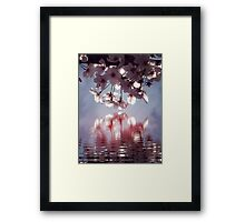 Pink perfection Framed Print