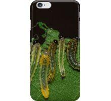 Caterpillar Gems iPhone Case/Skin