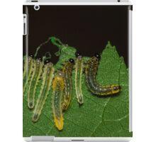 Caterpillar Gems iPad Case/Skin