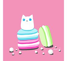 Macarons and Cat Photographic Print