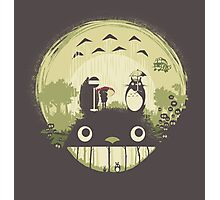 Totoro nightmare Photographic Print