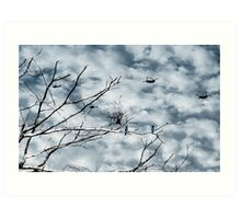 Kingfishers and Helicopters Art Print