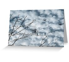 Kingfishers and Helicopters Greeting Card
