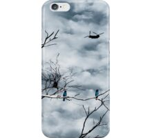 Kingfishers and Helicopters iPhone Case/Skin