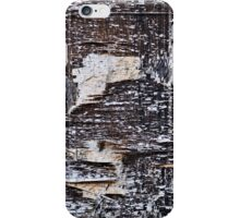 Seen And Not Seen iPhone Case/Skin