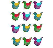 Colourful Little Birds Collage Photographic Print