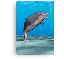 Smiling Dolphin Canvas Print