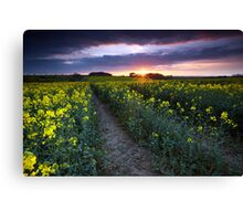 End of the Cold Canvas Print