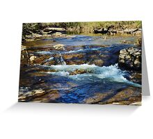 A Lazy Day at the Creek Greeting Card