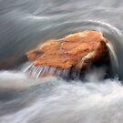 By the Stream by elasita