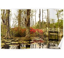 Cypress Gardens White Bridge Poster