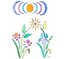Floral Design with Sun Photographic Print