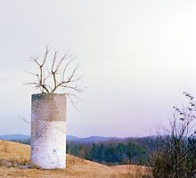 Tree in a Silo in January by manandhisworld