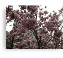 Spring Colors, Union Square, New York City Canvas Print
