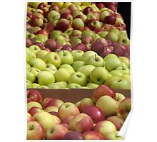 Colorful Apples, Union Square Farmers Market, Union Square, New York City Poster