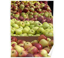 Colorful Apples, Union Square Farmers Market, Union Square, New York City Poster