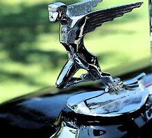 Antique Hood Ornaments #53 by SLBallew