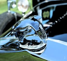 Antique Hood Ornaments #59 by SLBallew