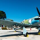Bristol Centaurus Powered Hawker Sea Fury, Giron Cuba 2014 by MarcW