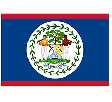 Belize Flag by NeedThreads
