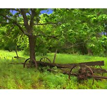 Country Living Wagon Photographic Print