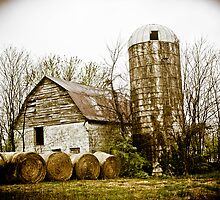 BARN FROM DAYS OF YORE by Pauline Evans
