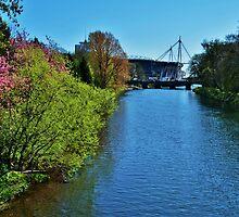 River Taff & Millennium Stadium, Cardiff by Paula J James