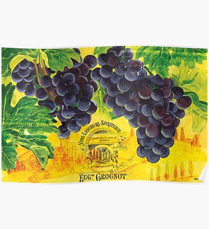 Vigne de Raisins Poster
