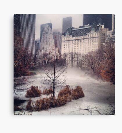 iPhone Rolling Fog Canvas Print