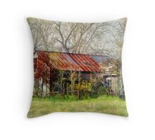 Abandoned Farmhouse Throw Pillow