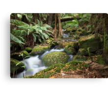 Green Creek Canvas Print