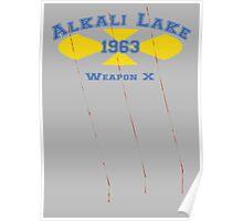 Alkali Lake Poster