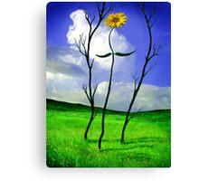 Rebecca - The Sunflower Canvas Print