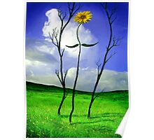 Rebecca - The Sunflower Poster