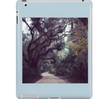 Timucuan iPad Case/Skin
