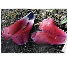 Two Hearts, Tulips Poster