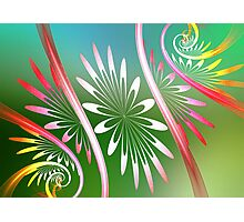 Flower Swirl Photographic Print