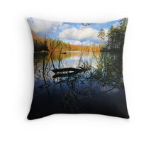 Aligator Snapping Turtle Retirement Home Throw Pillow