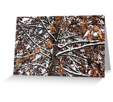 Winters weight Greeting Card